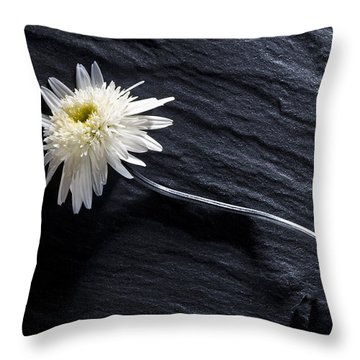 Black And White With Yellow Throw Pillow by Trevor Chriss