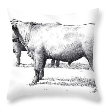 Black Angus Steers On Almshouse Road Throw Pillow by William Beauchamp