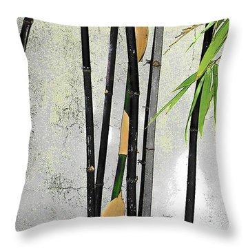 Black Bamboo #2 Sarasota Throw Pillow