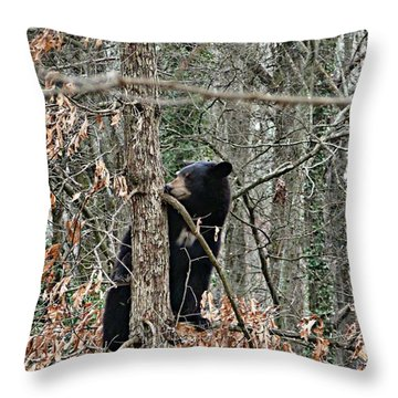 Black Bear Cub Throw Pillow by William Tanneberger