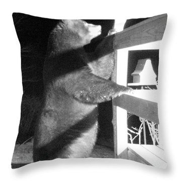 Throw Pillow featuring the photograph Black Bear by Mim White