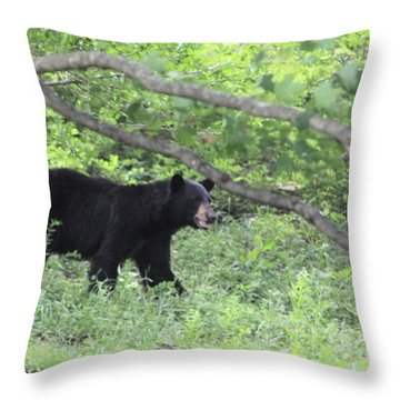 Black Bear On The Move Throw Pillow