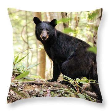 Black Bear Smile Throw Pillow by Debbie Green
