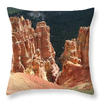 Black Birch Canyon Throw Pillow by Mary Gaines