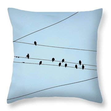 Black Birds Waiting In Blue Throw Pillow