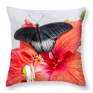 Black Butterfly On Red Flower Throw Pillow