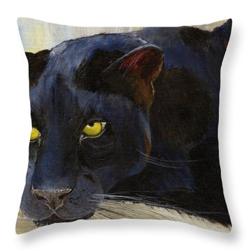 Black Cat Throw Pillow by Jamie Frier