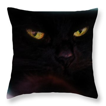 Black Cat Secrets Throw Pillow by Bob Orsillo