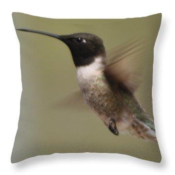 Black-chinned Hummingbird Throw Pillow