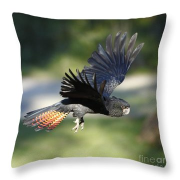 Black Cockatoo Throw Pillow