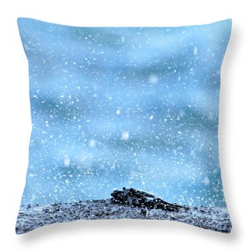 Black Crab In The Blue Ocean Spray Throw Pillow