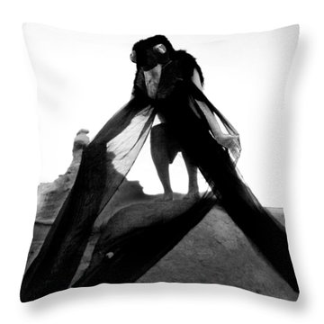 Throw Pillow featuring the photograph Black Crow 2 by Tarey Potter
