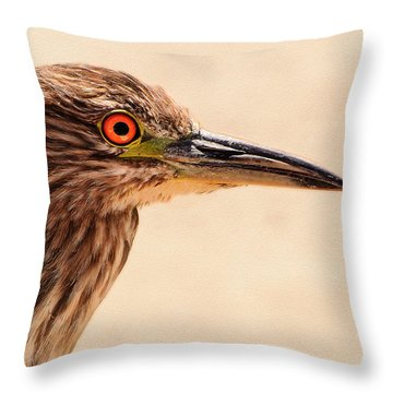 Black Crowned Night Heron 4 Throw Pillow by Bob and Nadine Johnston