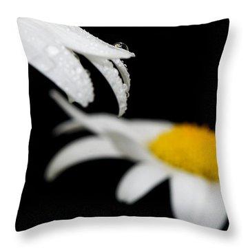 Black Daisy Reflection Throw Pillow by Lisa Knechtel