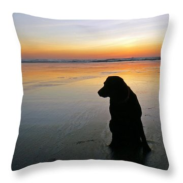Black Dog Sundown Throw Pillow