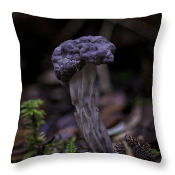 Throw Pillow featuring the photograph Black Elfin Saddle by Betty Depee
