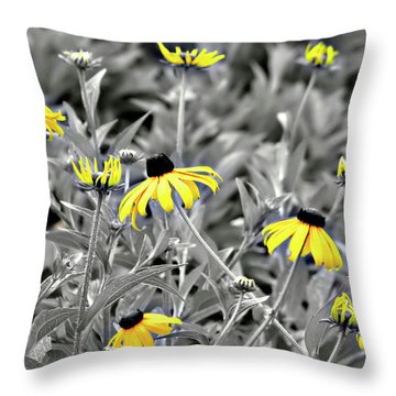 Black-eyed Susan Field Throw Pillow by Carolyn Marshall