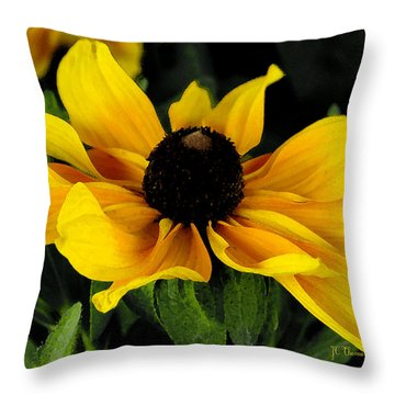 Black Eyed Susan  Throw Pillow by James C Thomas