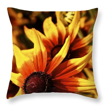 Throw Pillow featuring the photograph Black Eyed Susan by Linda Bianic