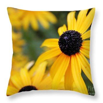 Black Eyed Susan Throw Pillow by Melissa Petrey