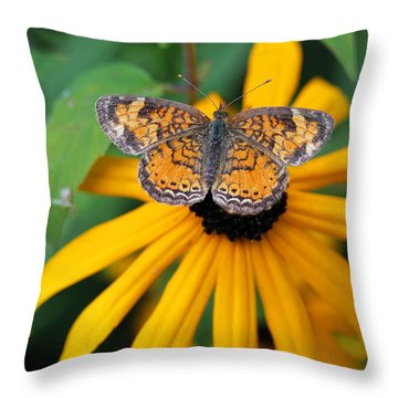 Black Eyed Susan With Butterfly Throw Pillow by Mary Bedy