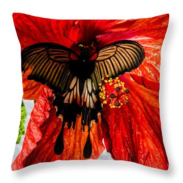 Black Birdwing On Red Throw Pillow