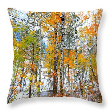 Black Hills Veil  Throw Pillow by Clarice  Lakota