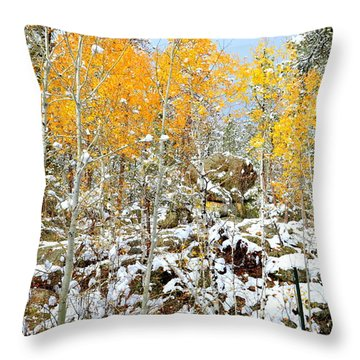 Black Hills Boulders Throw Pillow by Clarice  Lakota