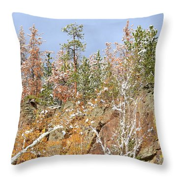 Black Hills Color Palette Throw Pillow by Clarice  Lakota