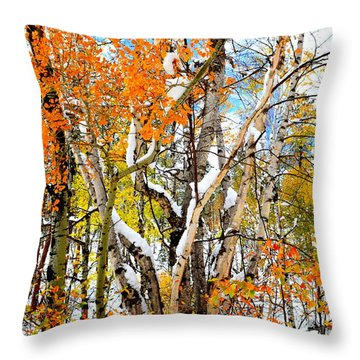 Throw Pillow featuring the photograph Black Hills Entanglement by Clarice  Lakota