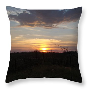 Throw Pillow featuring the photograph Black Hills Sunset IIi by Cathy Anderson