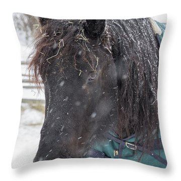 Black Horse In Snow Throw Pillow