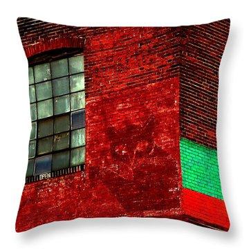 Black Kat Throw Pillow by Robert Geary