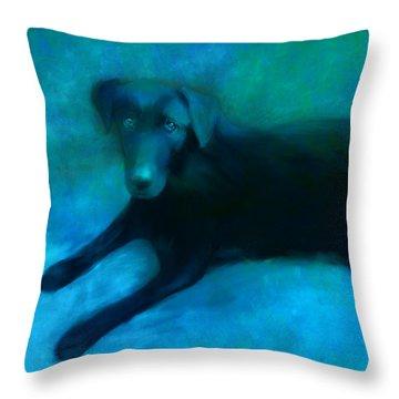 Black Lab Throw Pillow by Ann Powell