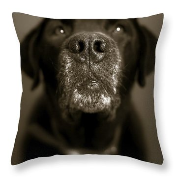 Black Lab Nose Throw Pillow