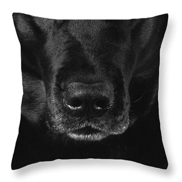 Black Labrador Retriever Throw Pillow