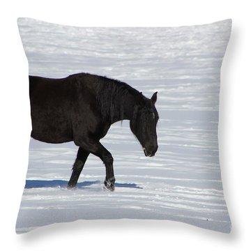 Black Magic Throw Pillow by Fiona Kennard