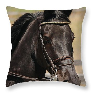 Black Mare Portrait Throw Pillow