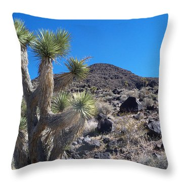 Throw Pillow featuring the photograph Black Mountain Yucca by Alan Socolik