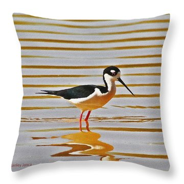 Throw Pillow featuring the photograph Black Neck Stilt Standing by Tom Janca