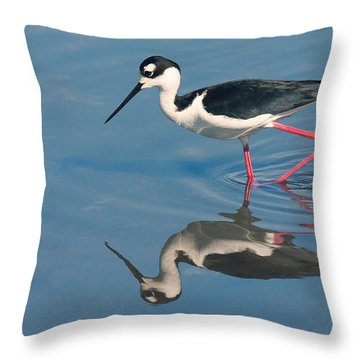 Black-necked Stilt - Huntington Beach California Throw Pillow