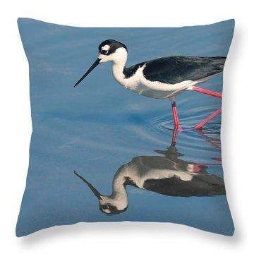 Black-necked Stilt - Huntington Beach California Throw Pillow by Ram Vasudev