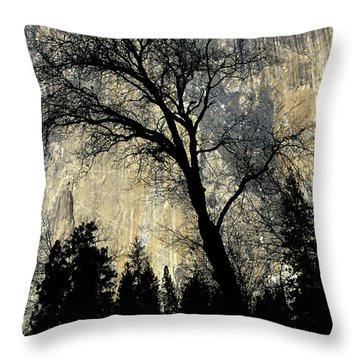 Black Oak Silhouetted In Front Of El Throw Pillow