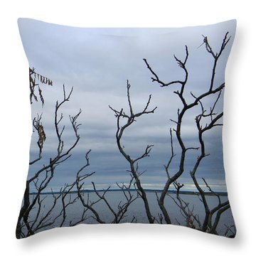 Black On Blue Throw Pillow by Jean Goodwin Brooks