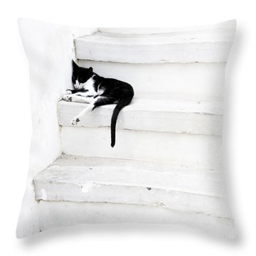 Black On White 2 Throw Pillow by Lisa Parrish