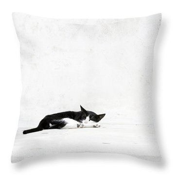 Throw Pillow featuring the photograph Black On White by Lisa Parrish