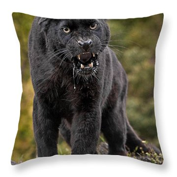 Black Panther Throw Pillow by Jerry Fornarotto