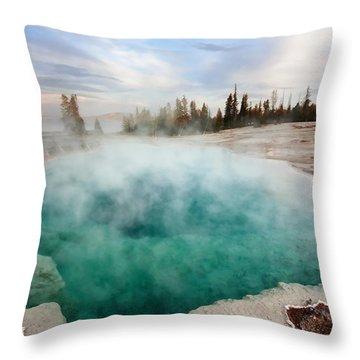 Black Pool At Dusk Throw Pillow
