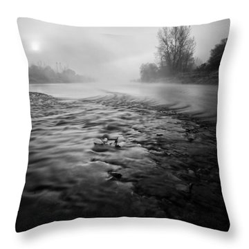 Black River Throw Pillow by Davorin Mance