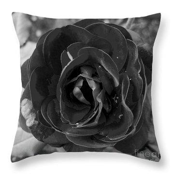 Black Rose Throw Pillow by Nina Ficur Feenan